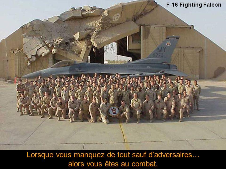 Quand la goupille est enlevée, Mr. Grenade n'est plus notre ami - USMC - F-16 Fighting Falcon