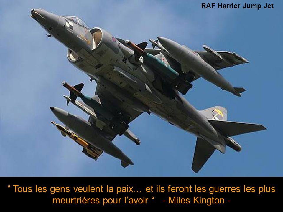 Sans munitions, l'Armée de l'Air n'est plus qu'un aeroclub de fils à papa - Auteur inconnu - F-22 Raptor