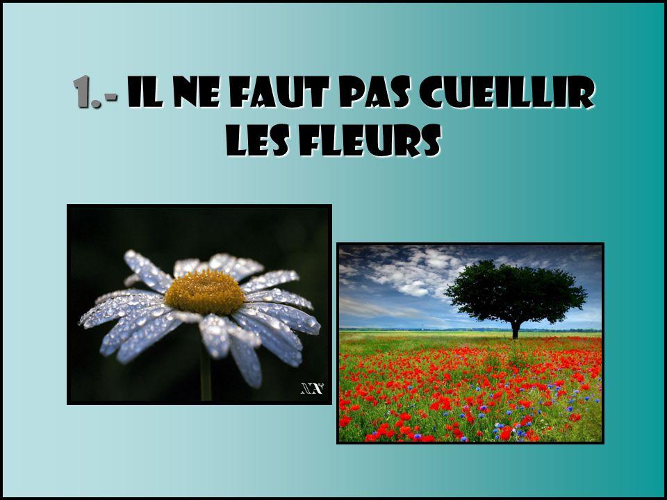1.- Il ne faut pas cueillir Les fleurs