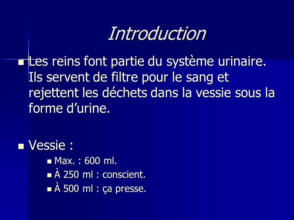 Introduction Les reins font partie du système urinaire.