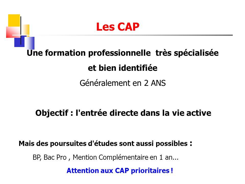 Les CAP Une formation professionnelle très spécialisée et bien identifiée Généralement en 2 ANS Objectif : l'entrée directe dans la vie active Mais de