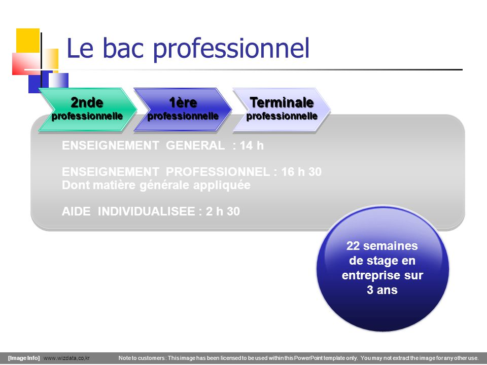 Le bac professionnel 2nde professionnelle 1ère professionnelle Terminale professionnelle [Image Info] www.wizdata,co,kr Note to customers : This image has been licensed to be used within this PowerPoint template only.