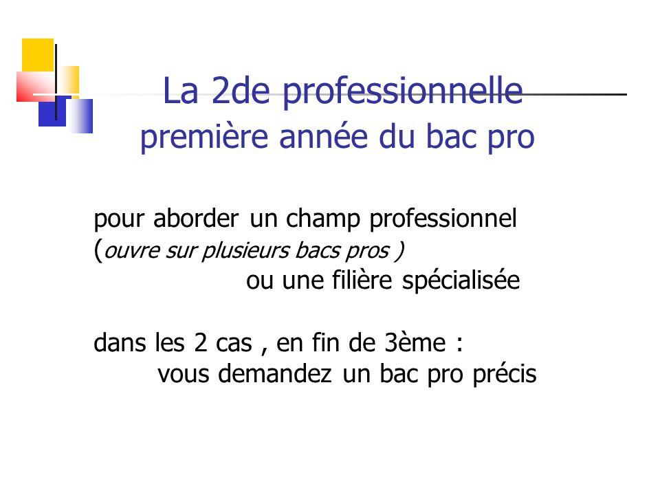La 2de professionnelle première année du bac pro pour aborder un champ professionnel ( ouvre sur plusieurs bacs pros ) ou une filière spécialisée dans