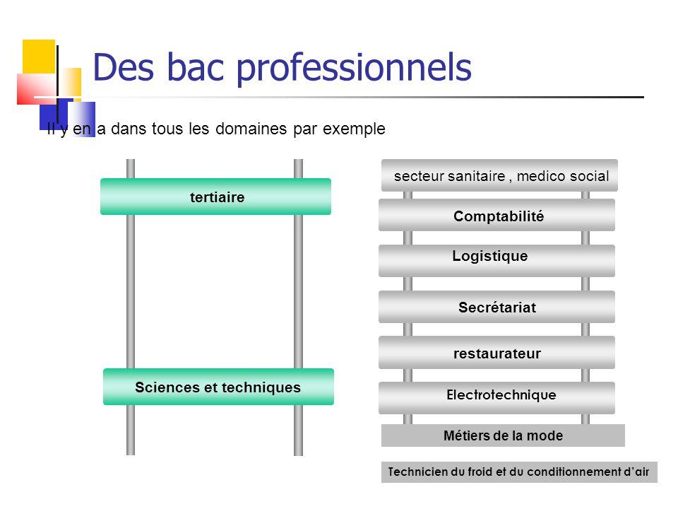 tertiaire Sciences et techniques Il y en a dans tous les domaines par exemple Des bac professionnels Comptabilité Secrétariat restaurateur Logistique