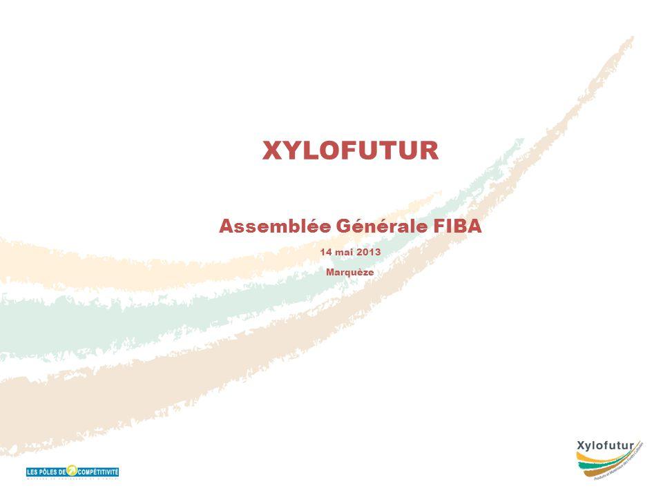 Réunion Bureau 16 novembre 2011 XYLOFUTUR Assemblée Générale FIBA 14 mai 2013 Marquèze