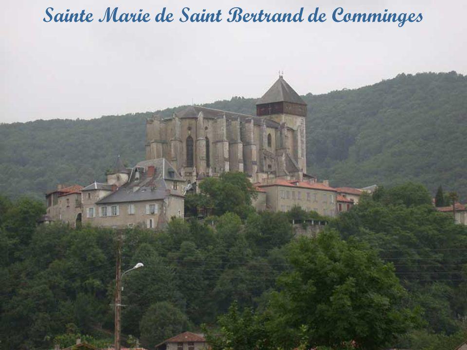 Notre Dame de Sées