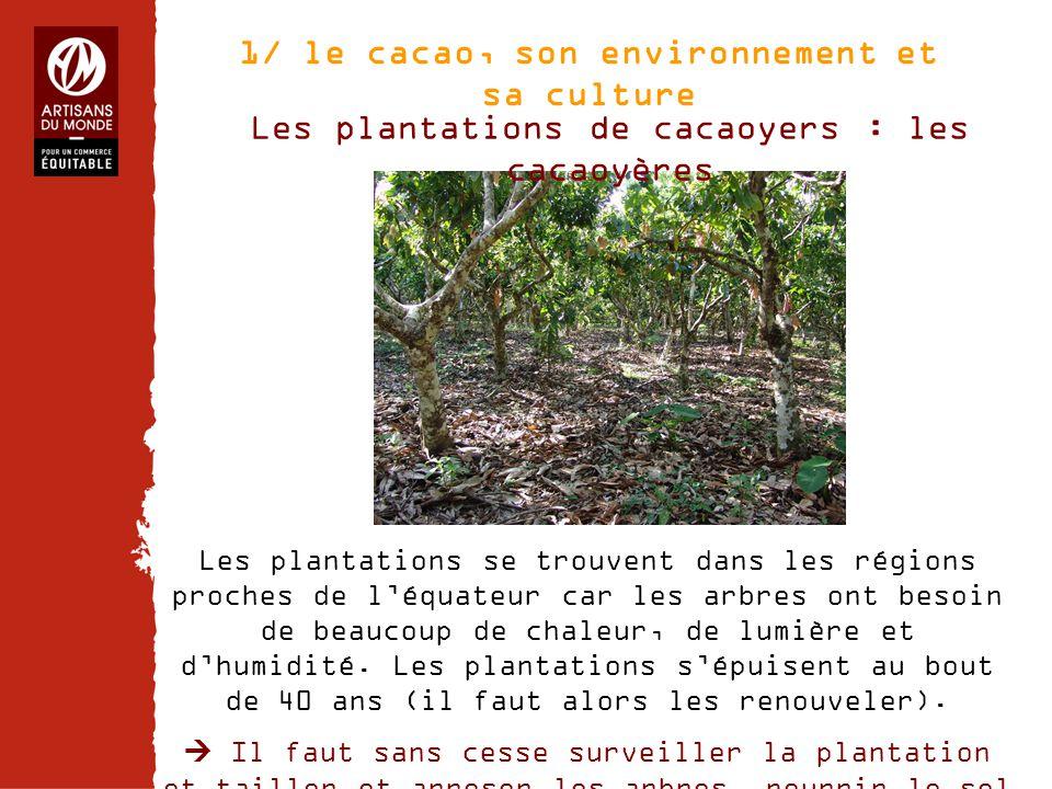 Chiffres Les plantations de cacaoyers : les cacaoyères Les plantations se trouvent dans les régions proches de l'équateur car les arbres ont besoin de