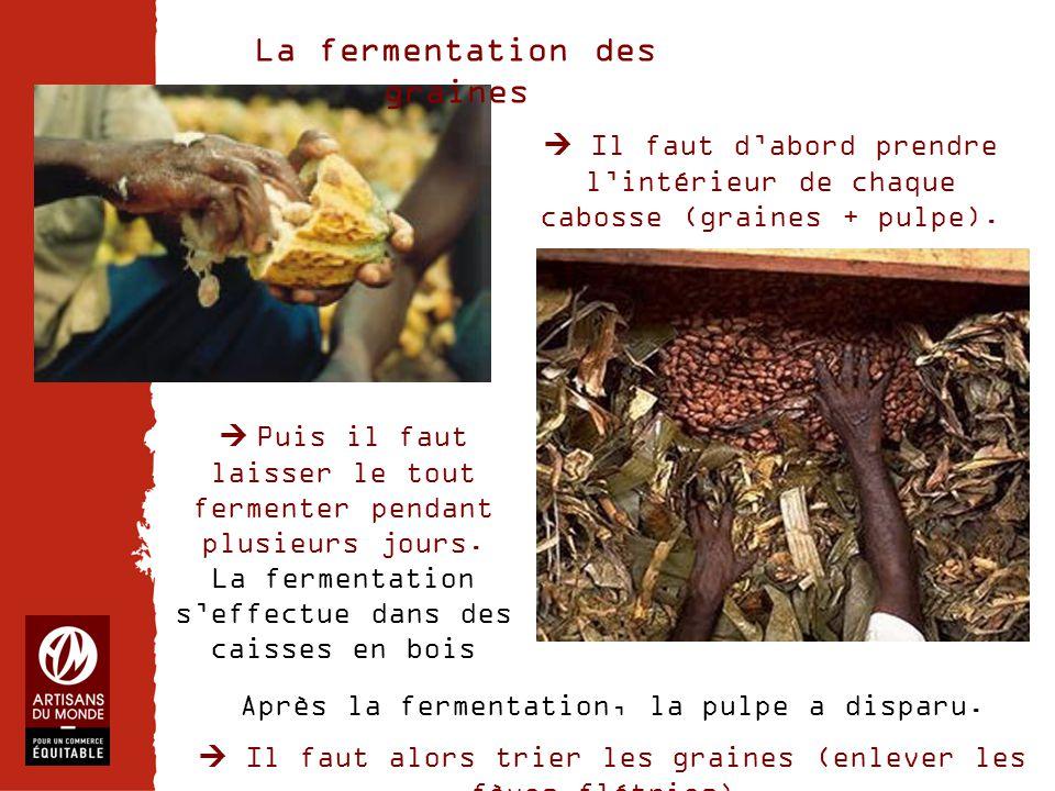 Chiffres  Il faut d'abord prendre l'intérieur de chaque cabosse (graines + pulpe). La fermentation des graines Après la fermentation, la pulpe a disp