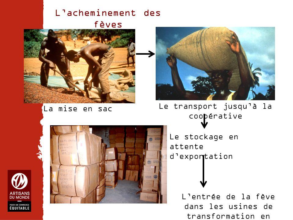 Chiffres La mise en sac L'acheminement des fèves Le transport jusqu'à la coopérative Le stockage en attente d'exportation L'entrée de la fève dans les