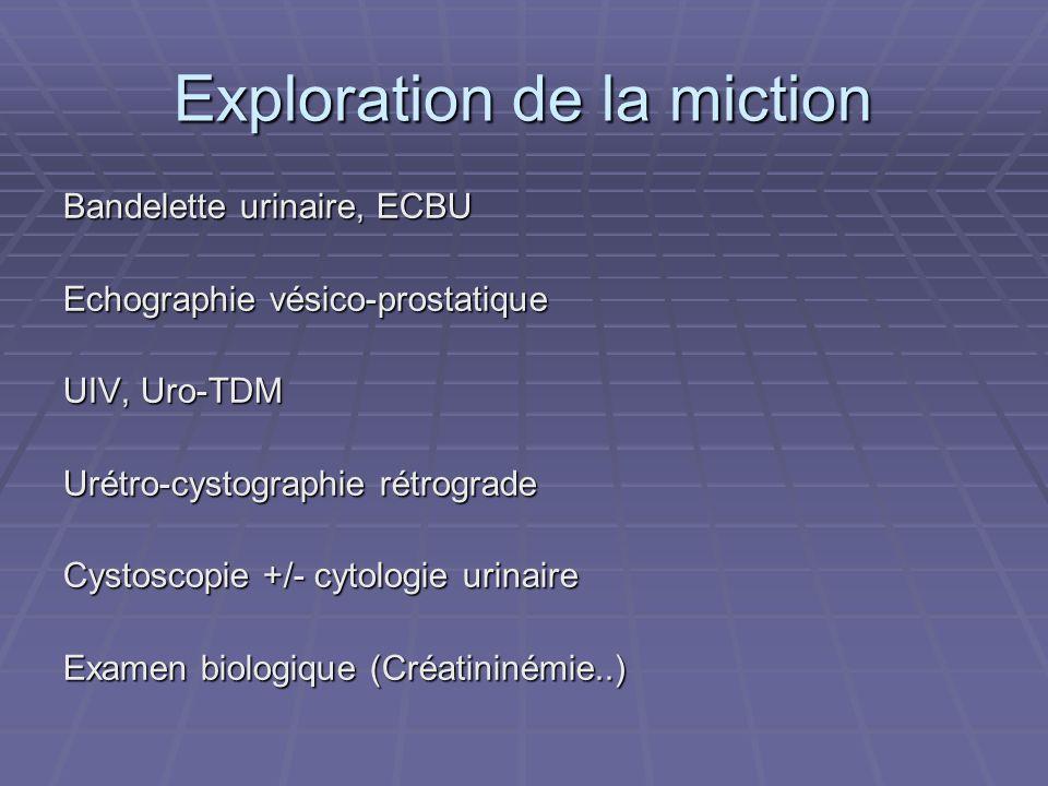 Exploration de la miction Bandelette urinaire, ECBU Echographie vésico-prostatique UIV, Uro-TDM Urétro-cystographie rétrograde Cystoscopie +/- cytolog