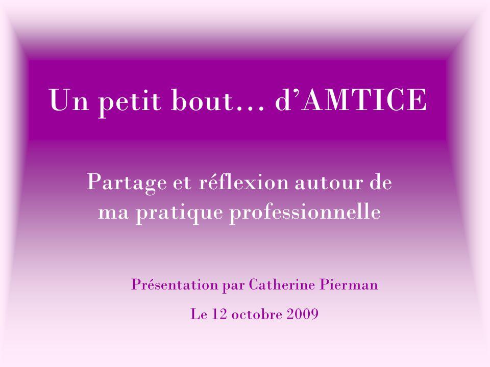 Un petit bout… d'AMTICE Partage et réflexion autour de ma pratique professionnelle Présentation par Catherine Pierman Le 12 octobre 2009