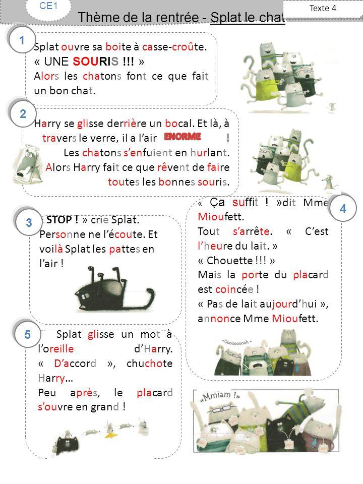 Thème de la rentrée - Splat le chat Texte 5 CE1 Mme Mioufett reprend sa craie.