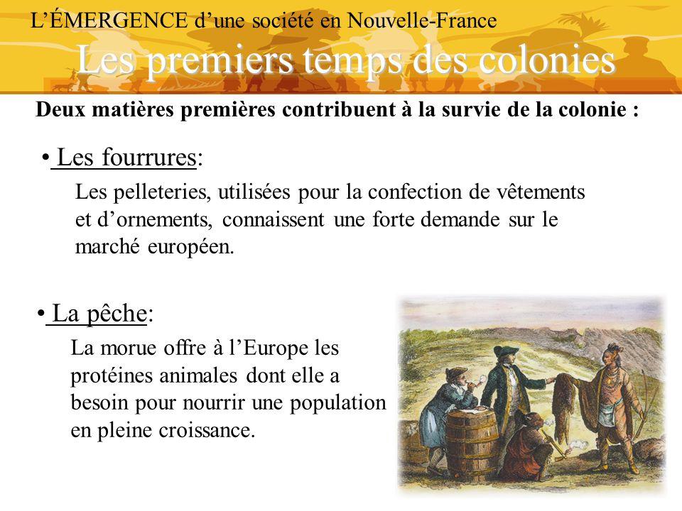 Les premiers temps des colonies L'ÉMERGENCE d'une société en Nouvelle-France Les fourrures: Les pelleteries, utilisées pour la confection de vêtements