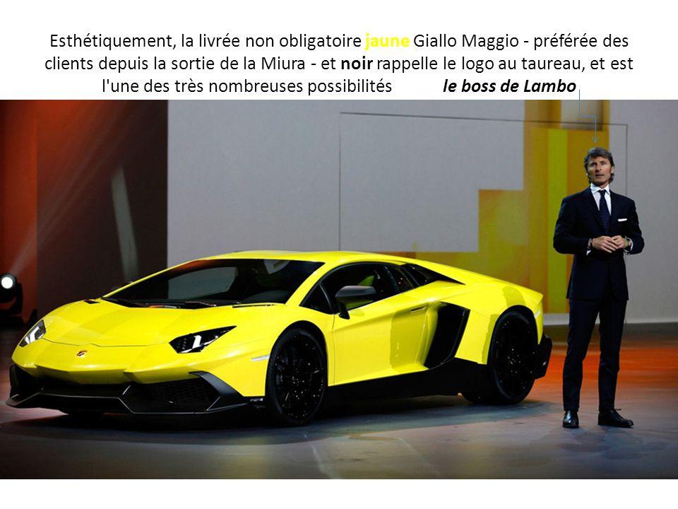 Esthétiquement, la livrée non obligatoire jaune Giallo Maggio - préférée des clients depuis la sortie de la Miura - et noir rappelle le logo au taureau, et est l une des très nombreuses possibilités le boss de Lambo