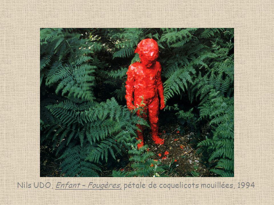Nils UDO, Enfant – Fougères, pétale de coquelicots mouillées, 1994