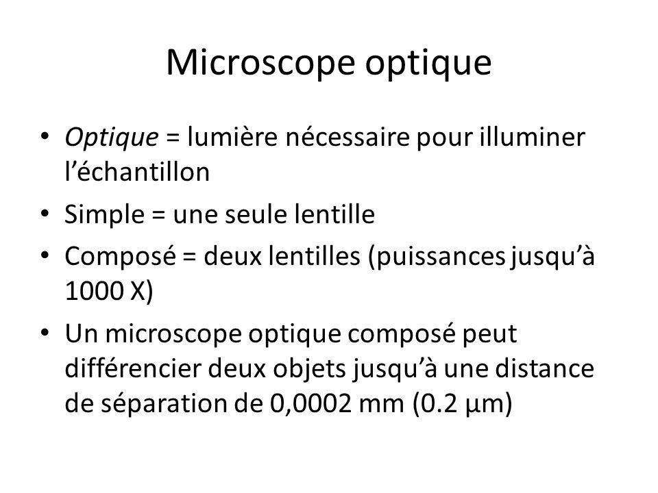 Microscope optique Optique = lumière nécessaire pour illuminer l'échantillon Simple = une seule lentille Composé = deux lentilles (puissances jusqu'à