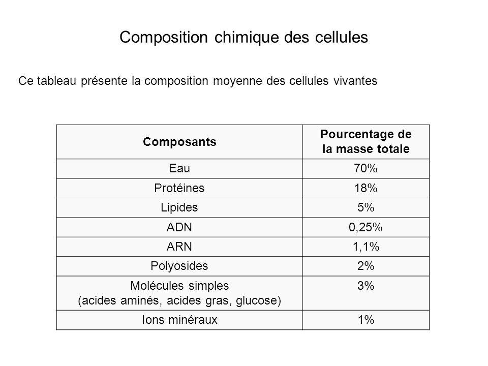 Composition chimique des cellules Composants Pourcentage de la masse totale Eau70% Protéines18% Lipides5% ADN0,25% ARN1,1% Polyosides2% Molécules simples (acides aminés, acides gras, glucose) 3% Ions minéraux1% Ce tableau présente la composition moyenne des cellules vivantes