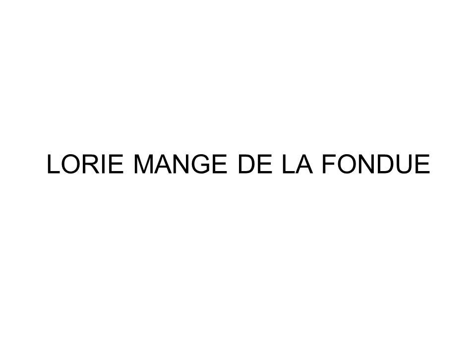 LORIE MANGE DE LA FONDUE