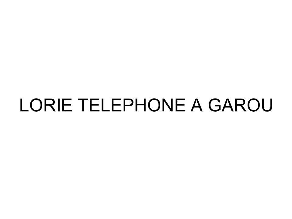 LORIE TELEPHONE A GAROU