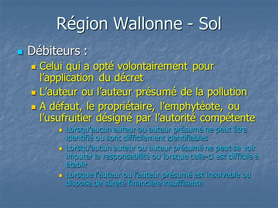 Région Wallonne - Sol Débiteurs : Débiteurs : Celui qui a opté volontairement pour l'application du décret Celui qui a opté volontairement pour l'appl
