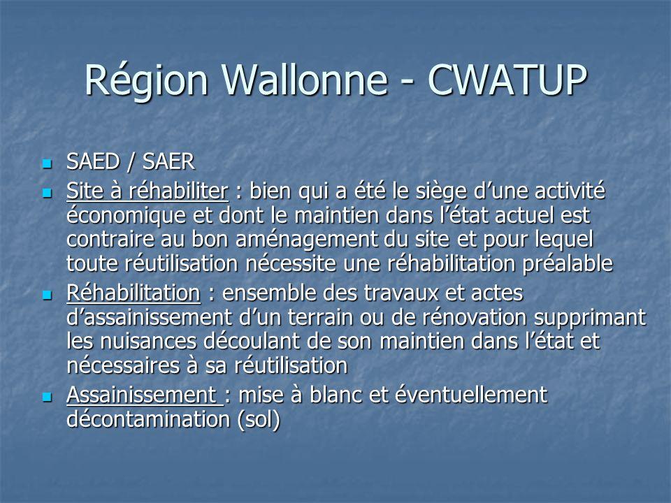 Région Wallonne - CWATUP SAED / SAER SAED / SAER Site à réhabiliter : bien qui a été le siège d'une activité économique et dont le maintien dans l'éta
