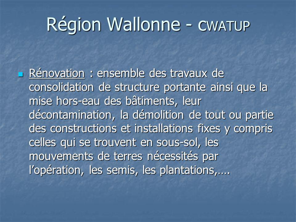 Région Wallonne - c WATUP Rénovation : ensemble des travaux de consolidation de structure portante ainsi que la mise hors-eau des bâtiments, leur déco