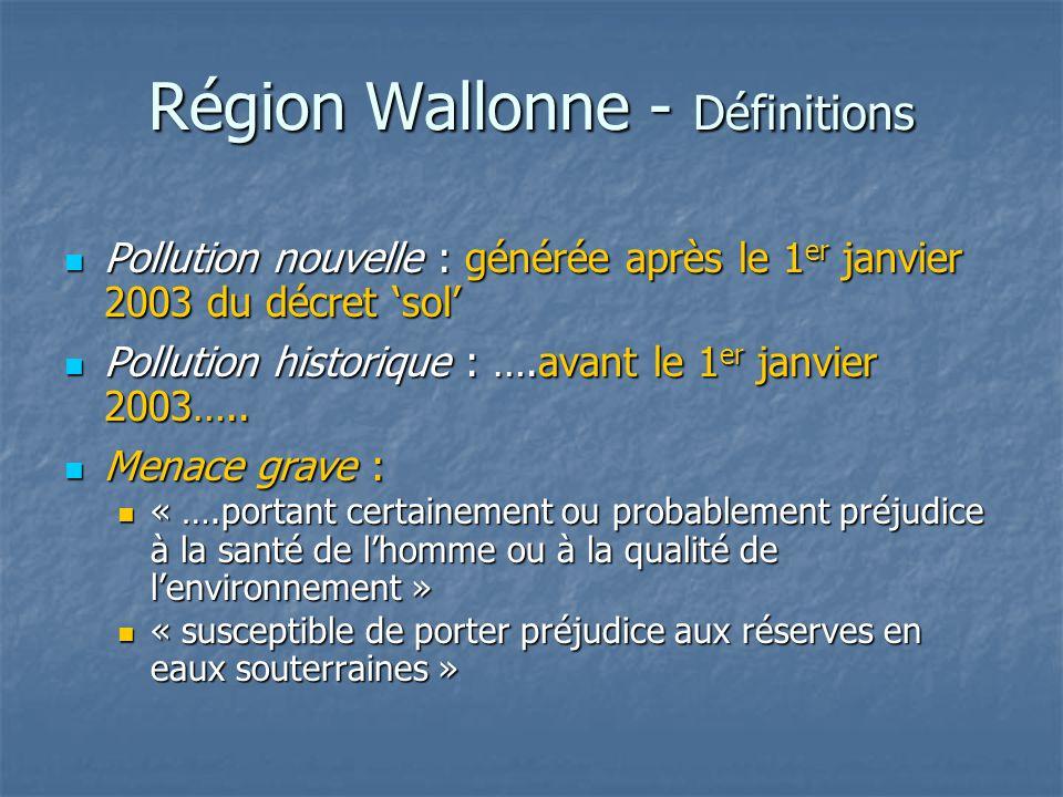 Région Wallonne - Définitions Pollution nouvelle : générée après le 1 er janvier 2003 du décret 'sol' Pollution nouvelle : générée après le 1 er janvi