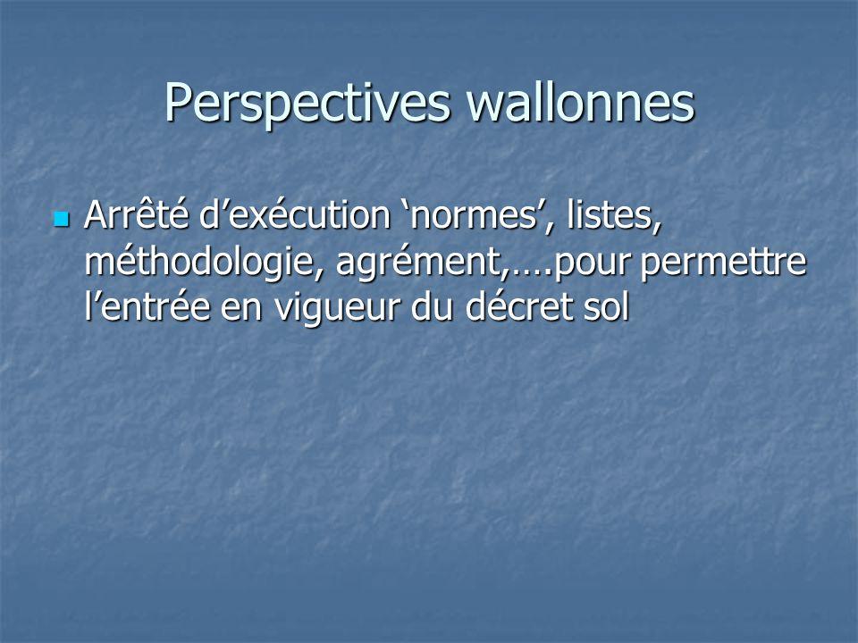 Perspectives wallonnes Arrêté d'exécution 'normes', listes, méthodologie, agrément,….pour permettre l'entrée en vigueur du décret sol Arrêté d'exécuti