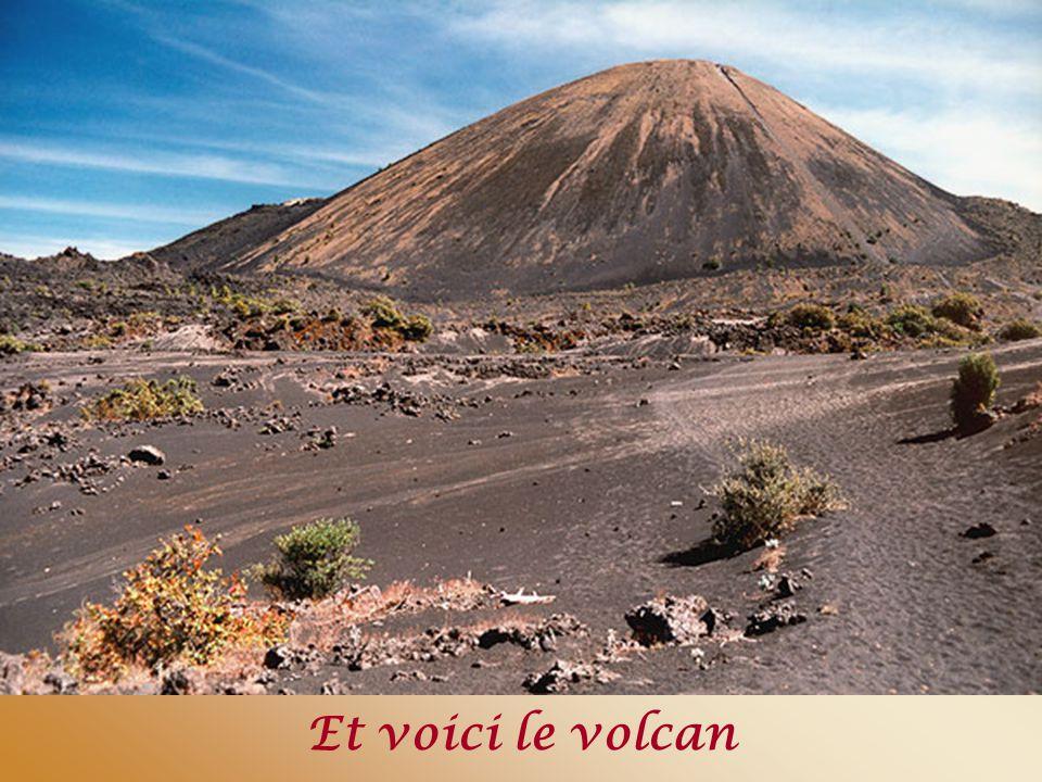 Parangaricutin – église ensevelie sous la lave d'un volcan