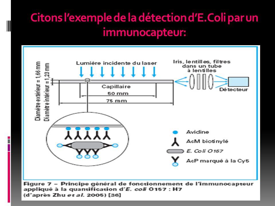 Citons l'exemple de la détection d'E.Coli par un immunocapteur: