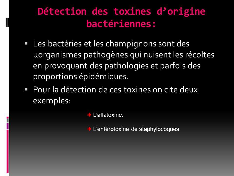 Détection des toxines d'origine bactériennes:  Les bactéries et les champignons sont des µorganismes pathogènes qui nuisent les récoltes en provoquant des pathologies et parfois des proportions épidémiques.