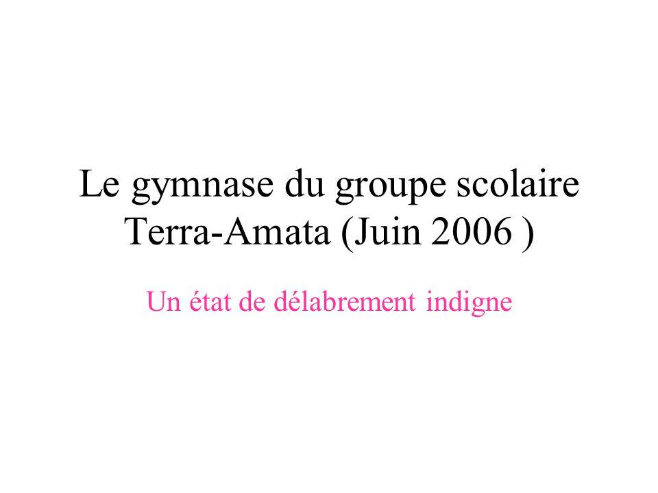 Le gymnase du groupe scolaire Terra-Amata (Juin 2006 ) Un état de délabrement indigne