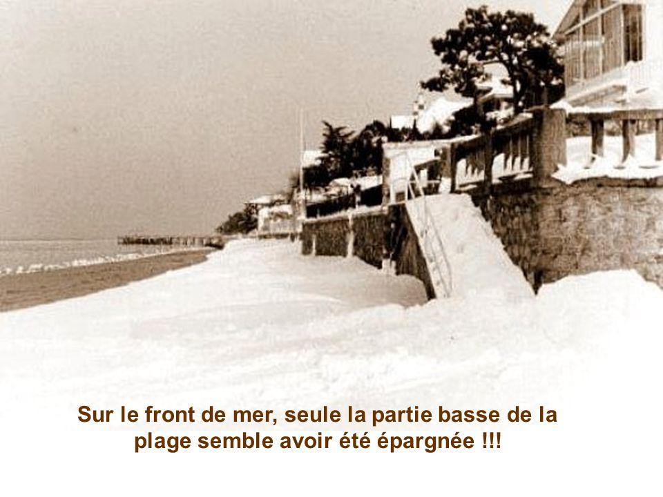 Une nouvelle station d'hiver est née !!! Avenue Gambetta, ces skieurs opportunistes s'en donnent à cœur joie...