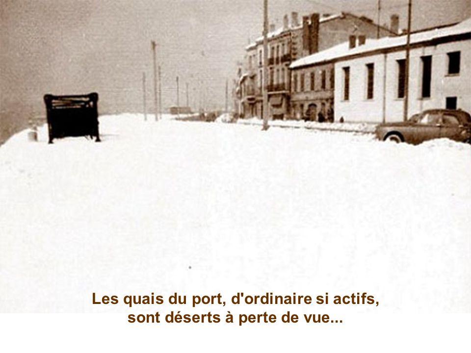 Bordeaux n'a pas échappé à la marée blanche... On y mesure jusqu'à 80 cm de poudreuse !!! Là encore, devant le Grand Hôtel, les voitures disparaissent