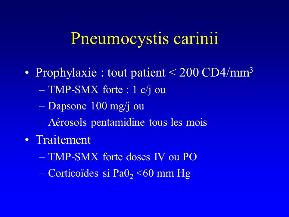 Prophylaxie : tout patient < 200 CD4/mm 3 –TMP-SMX forte : 1 c/j ou –Dapsone 100 mg/j ou –Aérosols pentamidine tous les mois Traitement –TMP-SMX forte doses IV ou PO –Corticoïdes si Pa0 2 <60 mm Hg