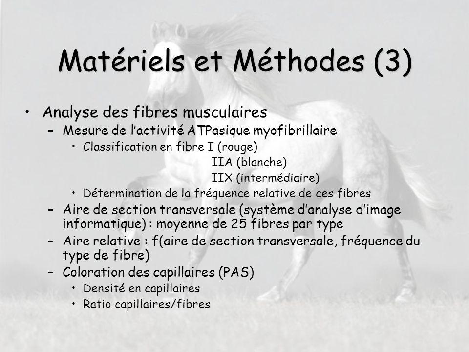 Matériels et Méthodes (3) Analyse des fibres musculaires –Mesure de l'activité ATPasique myofibrillaire Classification en fibre I (rouge) IIA (blanche) IIX (intermédiaire) Détermination de la fréquence relative de ces fibres –Aire de section transversale (système d'analyse d'image informatique) : moyenne de 25 fibres par type –Aire relative : f(aire de section transversale, fréquence du type de fibre) –Coloration des capillaires (PAS) Densité en capillaires Ratio capillaires/fibres