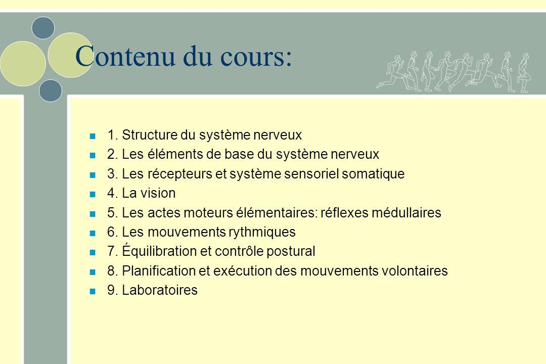 Contenu du cours: n 1. Structure du système nerveux n 2. Les éléments de base du système nerveux n 3. Les récepteurs et système sensoriel somatique n
