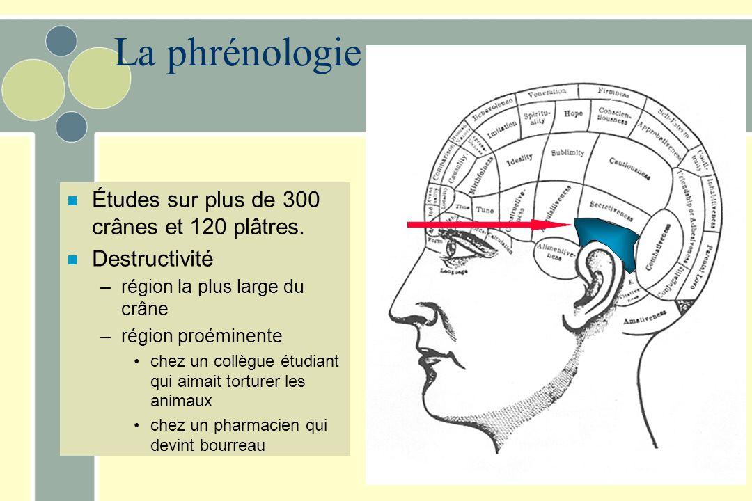 La phrénologie n Études sur plus de 300 crânes et 120 plâtres. n Destructivité –région la plus large du crâne –région proéminente chez un collègue étu