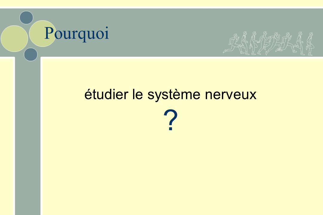 étudier le système nerveux ? Pourquoi