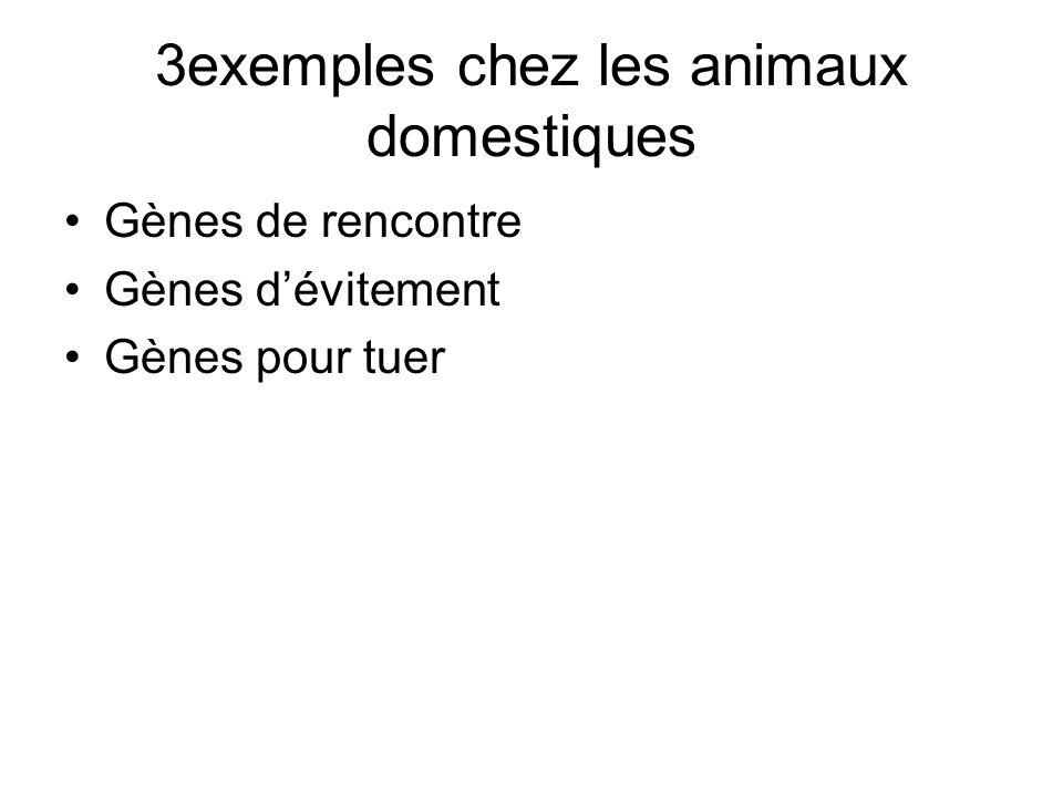 3exemples chez les animaux domestiques Gènes de rencontre Gènes d'évitement Gènes pour tuer