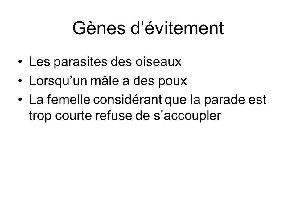 Gènes d'évitement Les parasites des oiseaux Lorsqu'un mâle a des poux La femelle considérant que la parade est trop courte refuse de s'accoupler