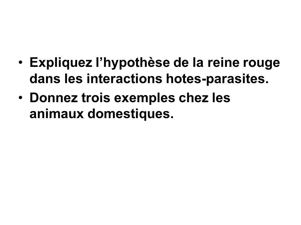 Expliquez l'hypothèse de la reine rouge dans les interactions hotes-parasites. Donnez trois exemples chez les animaux domestiques.