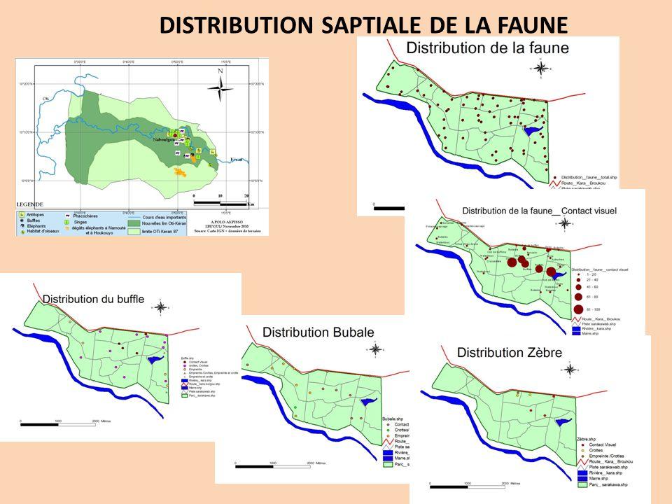 DISTRIBUTION SAPTIALE DE LA FAUNE