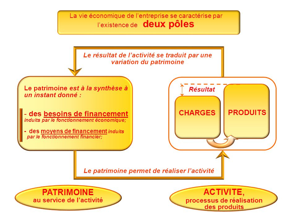 La vie économique de l'entreprise se caractérise par l'existence de deux pôles ACTIVITE, processus de réalisation des produits PATRIMOINE au service d