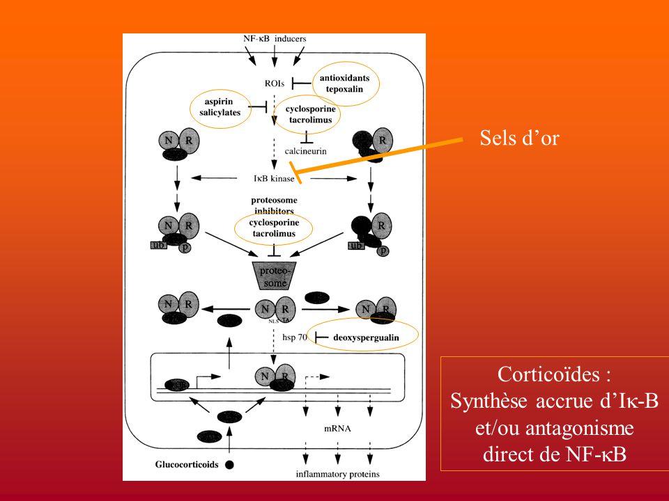 Sels d'or Corticoïdes : Synthèse accrue d'I  -B et/ou antagonisme direct de NF-  B