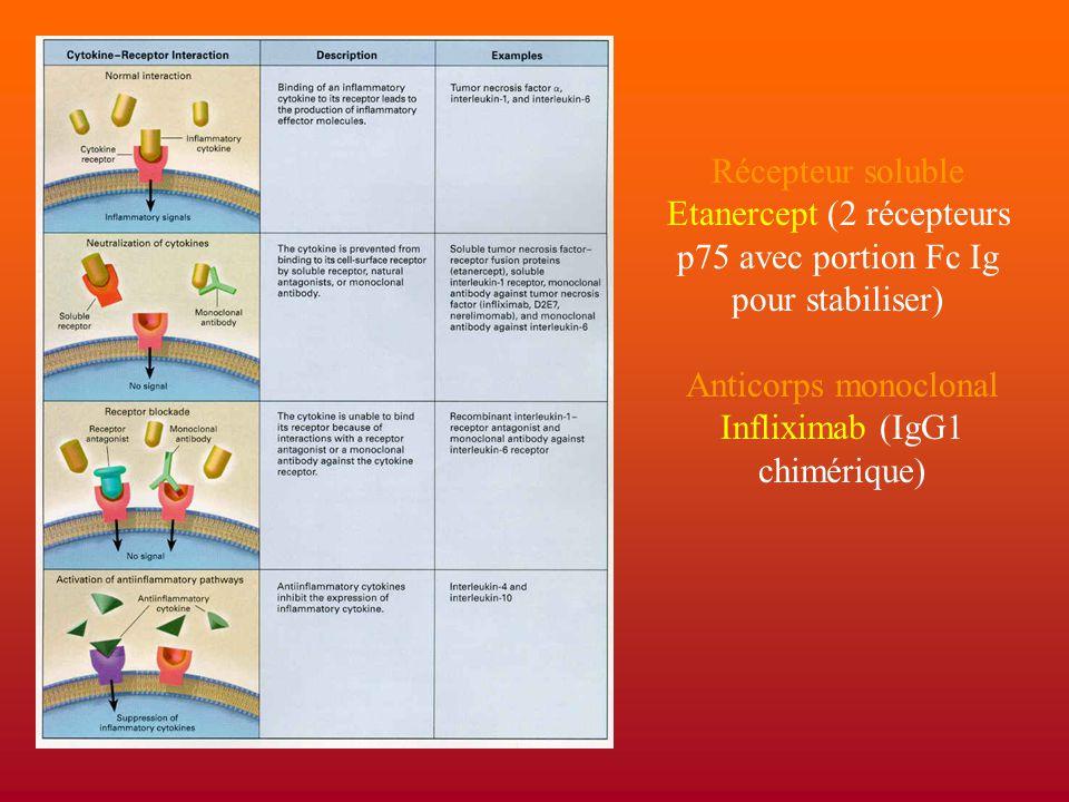 Récepteur soluble Etanercept (2 récepteurs p75 avec portion Fc Ig pour stabiliser) Anticorps monoclonal Infliximab (IgG1 chimérique)