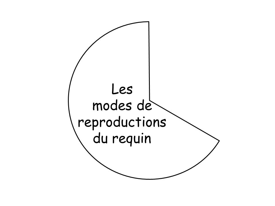 Les modes de reproductions du requin