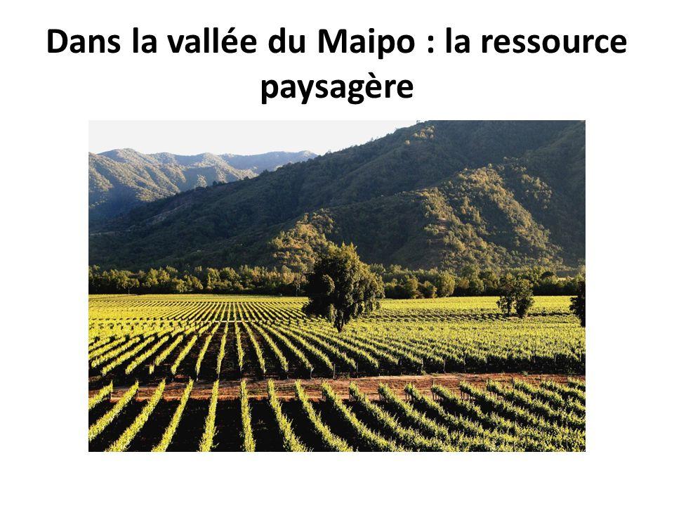 Dans la vallée du Maipo : la ressource paysagère