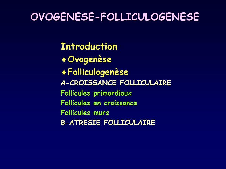 OVOGENESE-FOLLICULOGENESE Introduction  Ovogenèse  Folliculogenèse A-CROISSANCE FOLLICULAIRE Follicules primordiaux Follicules en croissance Follicu