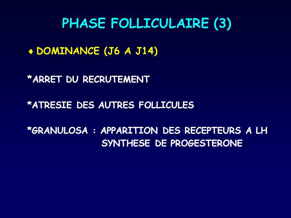  DOMINANCE (J6 A J14) * ARRET DU RECRUTEMENT *ATRESIE DES AUTRES FOLLICULES *GRANULOSA : APPARITION DES RECEPTEURS A LH SYNTHESE DE PROGESTERONE PHAS
